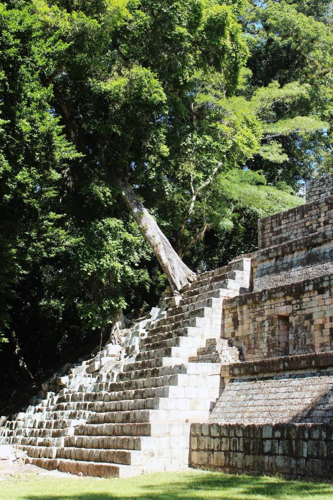 The Great Plaza Copan Ruins