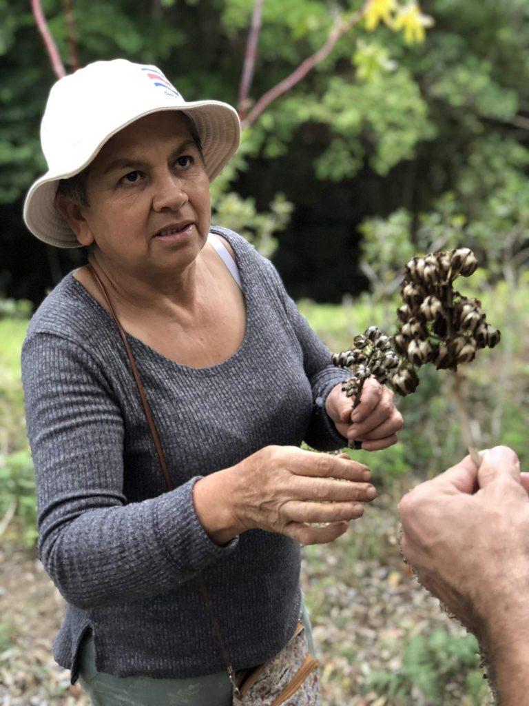 Costa Rica sustainable travel